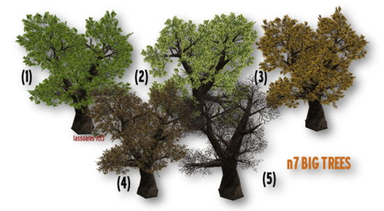 n7 BIG TREES (n7) lassoares-rct3