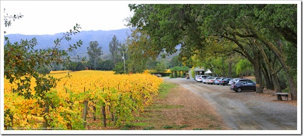 14111_QuarryhillBG_entrance_pano