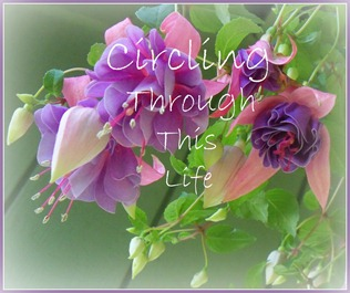 flower blog button