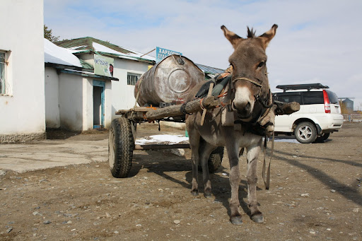 How water is delivered to some of the business in Kharkhorin