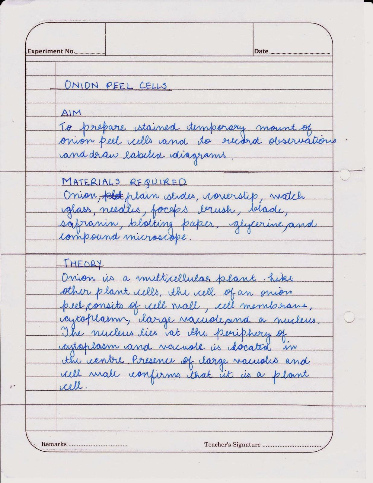 Do my homework biology frudgereport web fc com Home FC