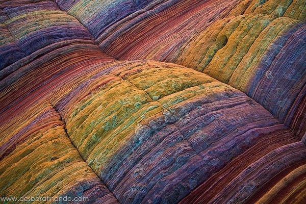 natureze-nature-padrao-pattern-desbaratinando (28)