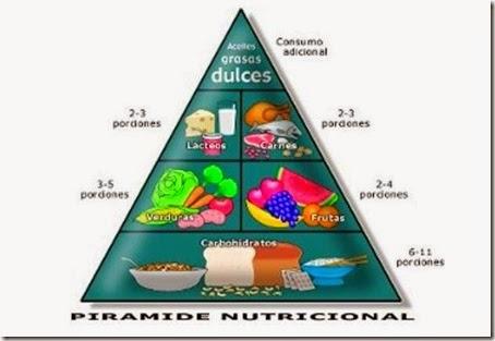 Nutrición, respiración e circulación