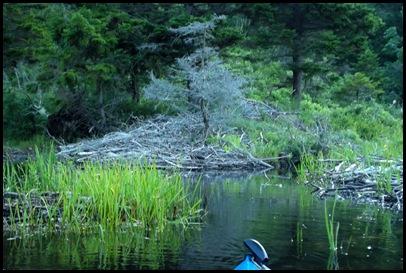On Jordan Pond 079