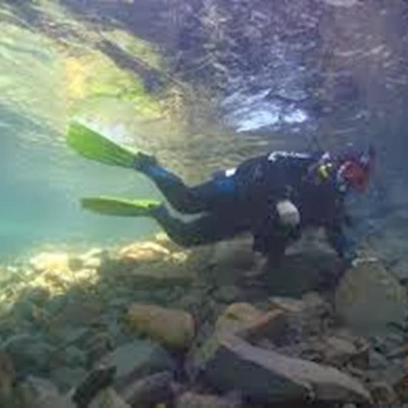 Buceo en la Isla de las Gallinas en San Carlos de Bariloche.
