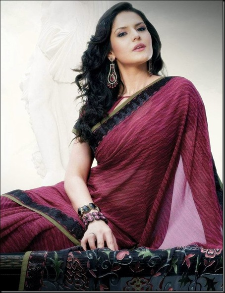Zarine-Khan-Saree-Photoshoot-004