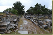 Priene Road down to Agora