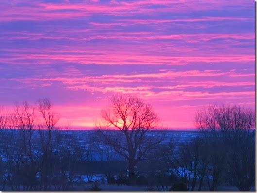 sunrise 2_20 010