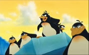 29 les pingouins
