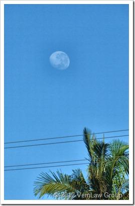 MoonP1030709