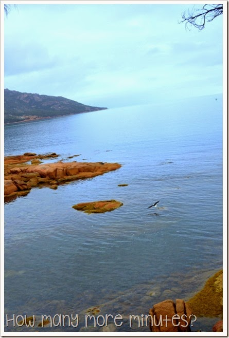 How Many More Minutes? ~ Coles Bay & Freycinet National Park