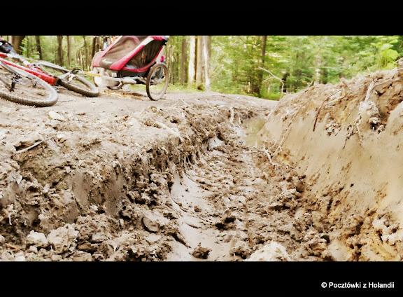 Szlak graniczny od przełęczy Beskid (644m npm) okazał się być bardzo zniszczony przez zwózkę drewna
