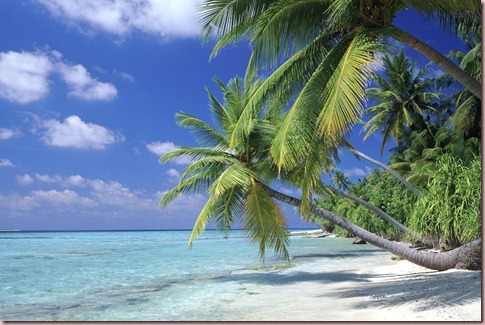 beautiful_beach-other_thumb