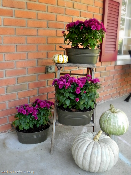 Front Porch Fall Colors fall mums