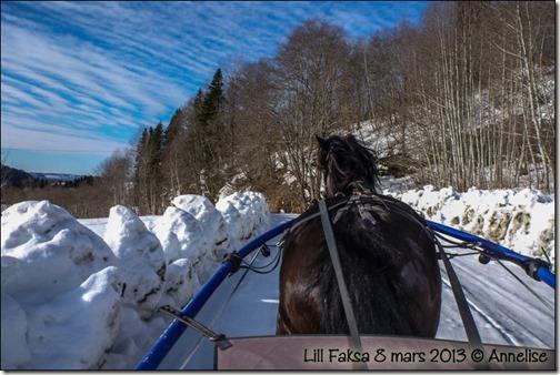 2013mar-lillfaksa_01
