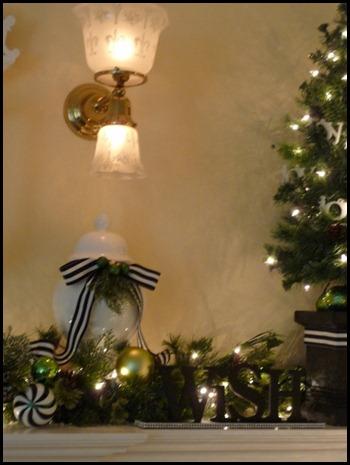 Christmas 2011 012 (600x800)