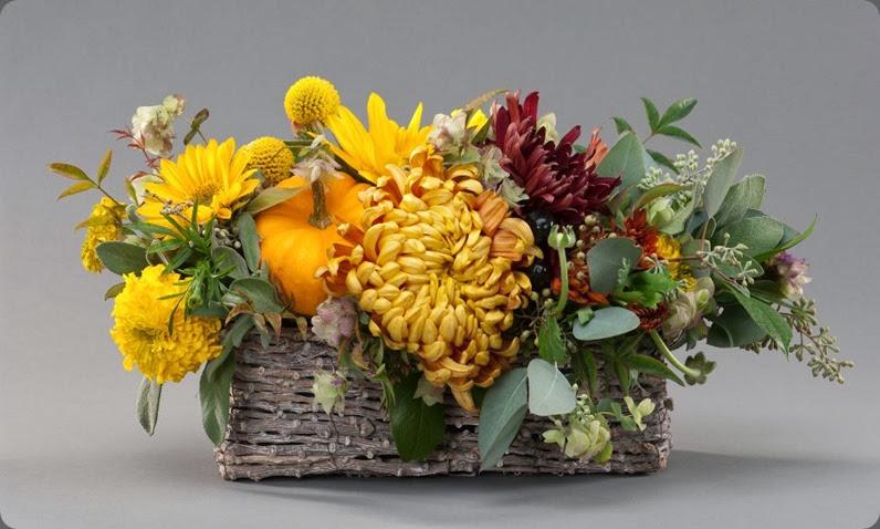 pumpkin 10511_10151289435095180_10649969_n melanie benson floral