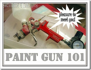 Paint Gun Information 101