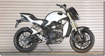 Minerva Sachs Naked 250   Minerva Motorcycles Review