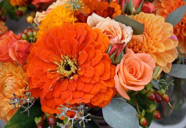 8040_10151152448250152_1029776444_n flora organica designs