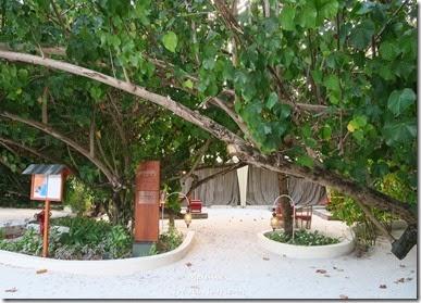 馬爾地夫 Centara渡假村 (32)