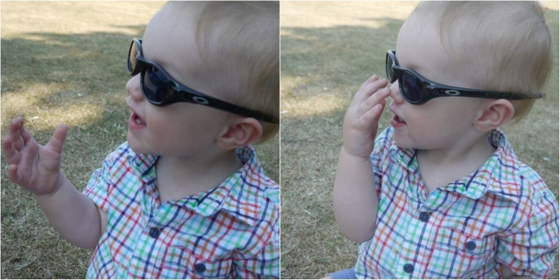 Sunglasses&Riley_Collage
