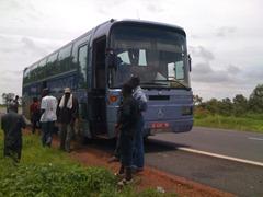 Bani Bus
