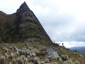 11-Sumapaz-Pico-Aguila-3.JPG