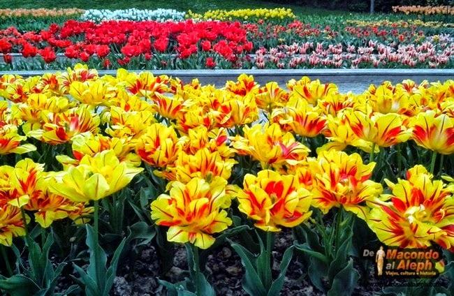 Parque Floral de Paris Bosque de Vincennes 12