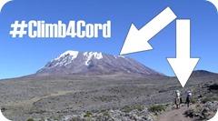 Climb4Cord