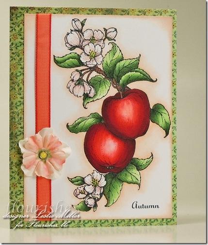 Apples1 (2)