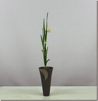 【生花】水仙