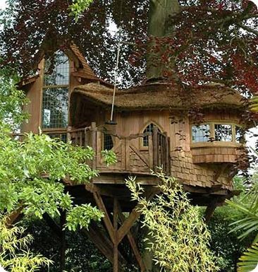 Tree house blue_forest1