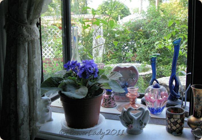 09-16-barbs-af-violet