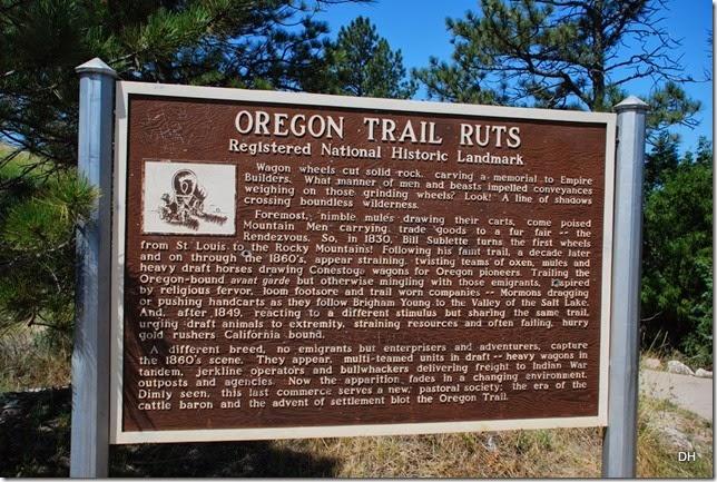 07-03-14 B Oregon Trail Ruts SHP (32)