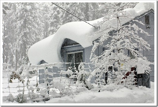 121223_snow_027