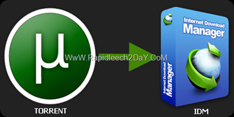 How To Download Torrent Files With IDM direct download links - (Torrent leech) torrific alternative