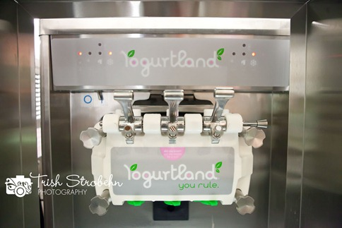 Yogurtland-LV-063