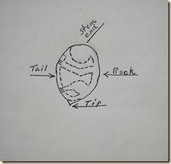 ppm schematic