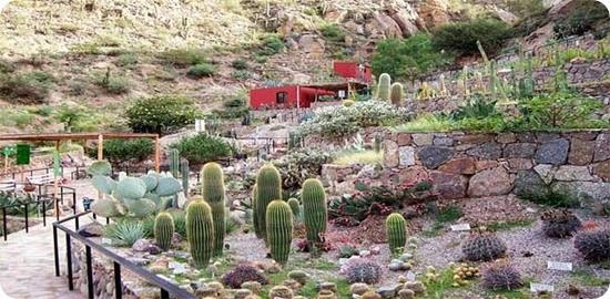 museo-botanico-chirau-mita