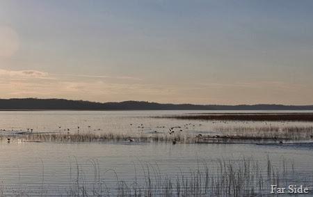 Shell Lake