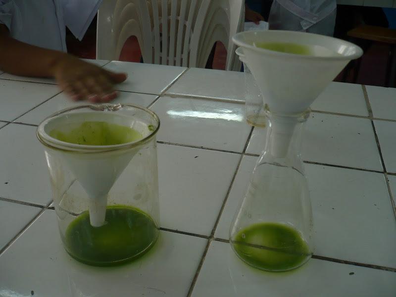 Embudo y papel de filtro - Instrumentos de laboratorio para separar sustancias