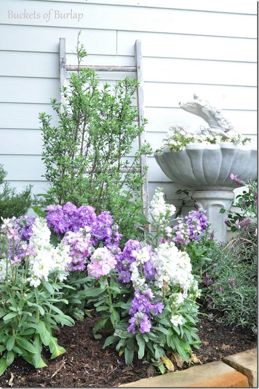 spring garden 2013