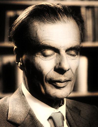 Aldous Huxley ebooklivro.blogspot.com