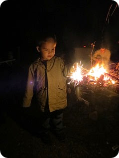 2014-8-22 Campfire, S'mores, and Sparklers (1)