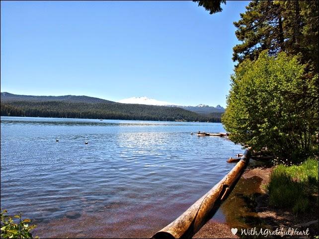 Campsite View 2