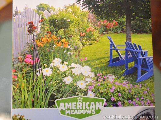 American Meadows garden