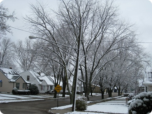holiday_firstsnow2_athomewithh