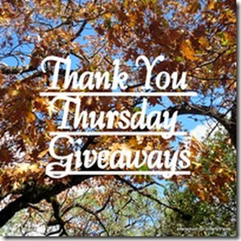 Thank You Thursday Giveaway #4–Hands On Math