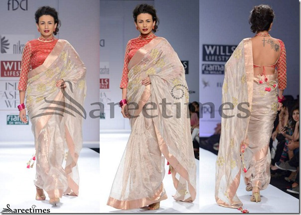 Nikasha_Tan_Embroidery_Saree